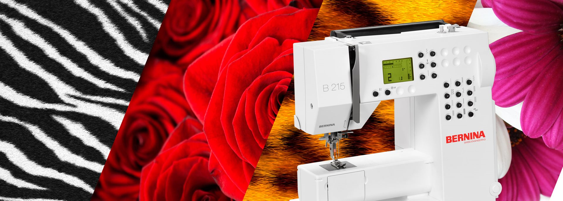 Picture: BERNINA 2 Series