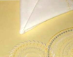 Stylish Placemat and Napkin
